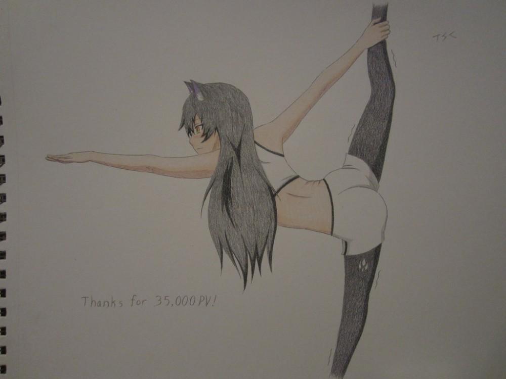 thanks_for_35_000_pv___by_xxsgtcampbell-d9i97j1.jpg